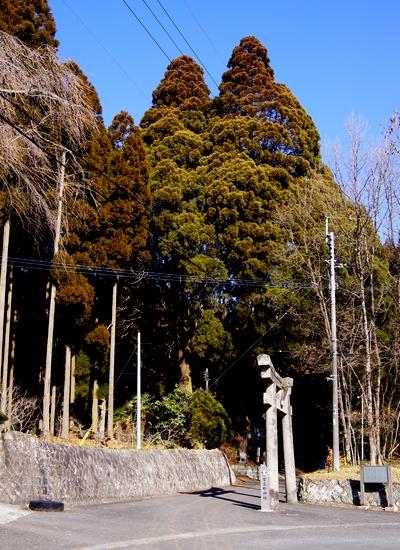 250112 宮處野神社1