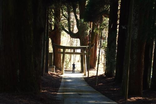 250112 宮處野神社12