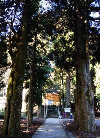 250112 宮處野神社10