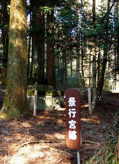 250112 宮處野神社32