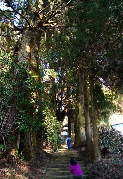 250112 籾山八幡神社6