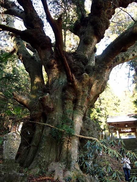 250112 籾山八幡神社11