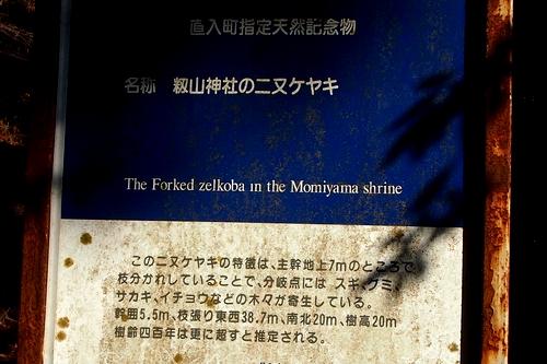 250112 籾山八幡神社24