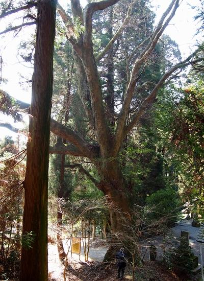 250112 籾山八幡神社25