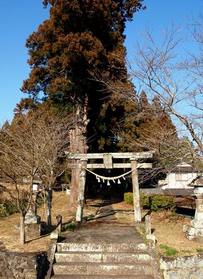 250112 日吉神社4