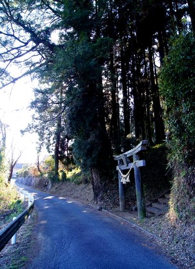 250112 日吉神社1