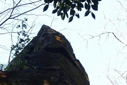 250112 柱立神社16