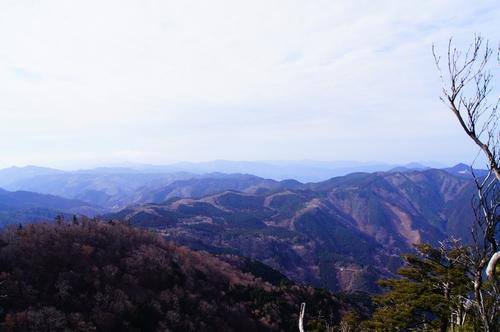 20130217 雁俣山19