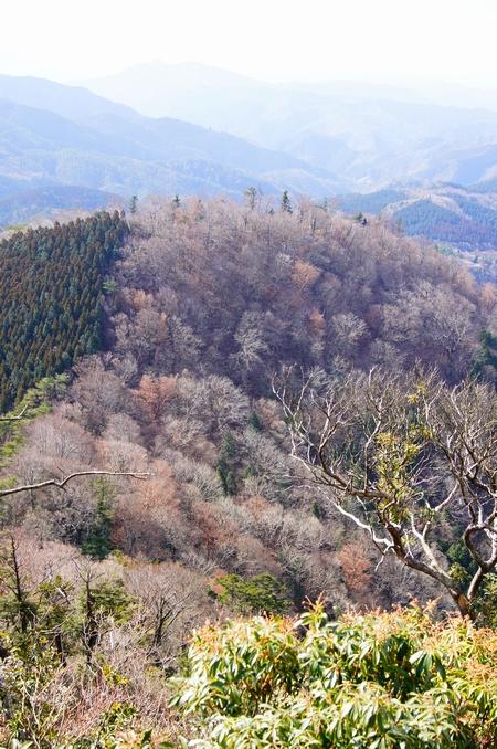 20130217 雁俣山20