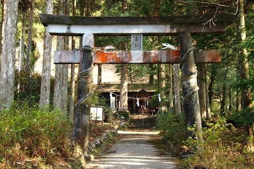 250309 白水阿蘇神社1