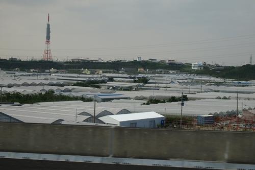 250305 沖縄初日3
