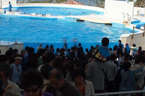 250306 美ら海水族館15