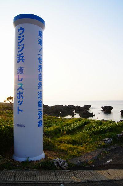 240413 ウジジ浜3
