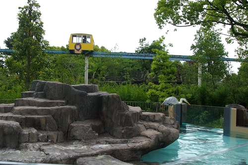 250511 動植物園10