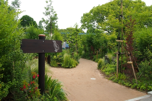250511 動植物園9