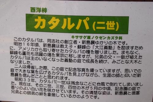 250515 徳富記念園7