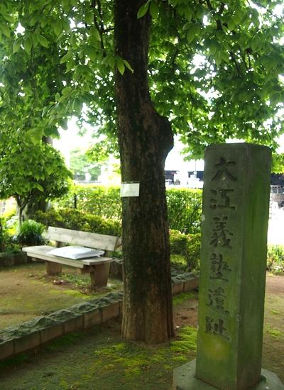 250515 徳富記念園16