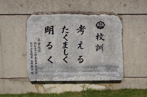 250525 日本一のガジュマル4-1