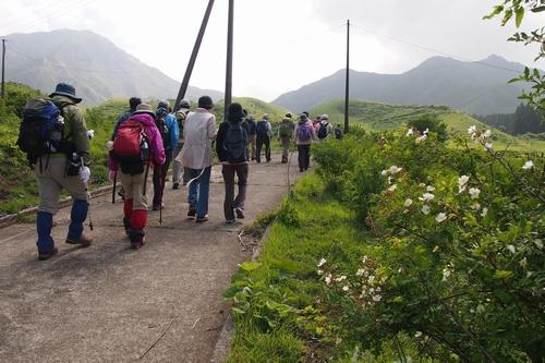 250526 烏帽子岳登山8