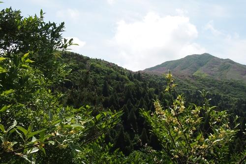 250526 烏帽子岳登山20