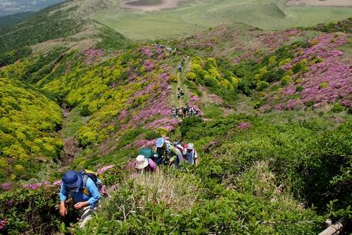 250526 烏帽子岳登山31