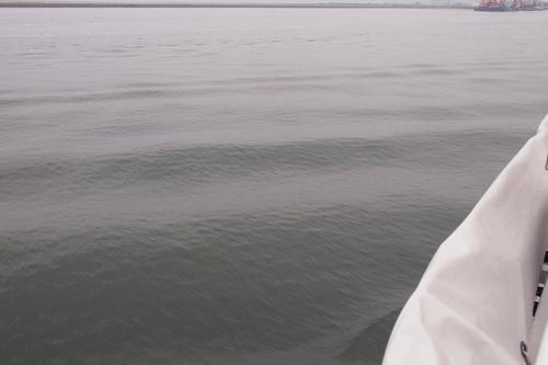 250608 海輝体験乗船28