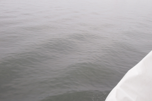 250608 海輝体験乗船30