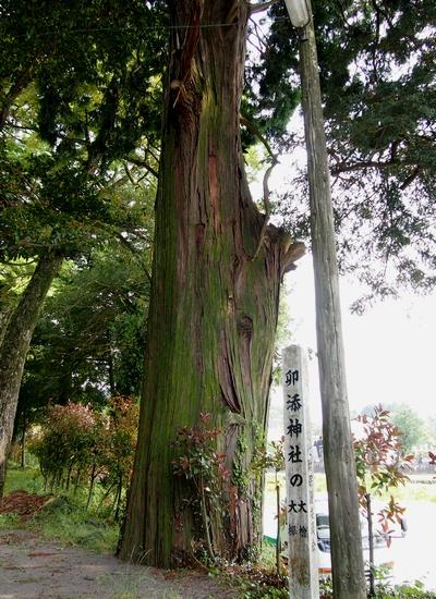 250516 卯添阿蘇神社5