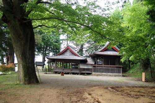 250516 卯添阿蘇神社16
