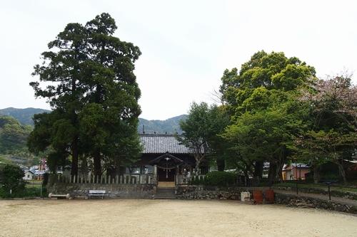 250404 田浦阿蘇神社7