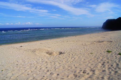 250622 ユワヌ浜6
