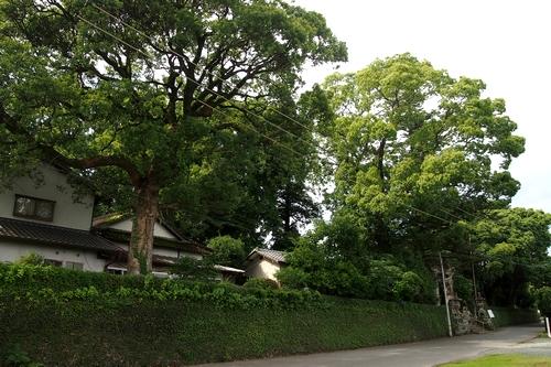 250630 北宮阿蘇神社1