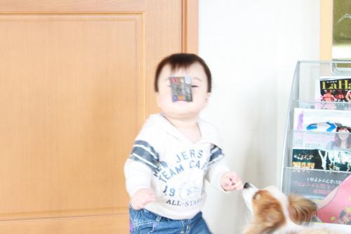 IMG_8860_convert_20101123153803.jpg