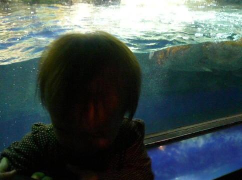 2010.5.21 blog 3
