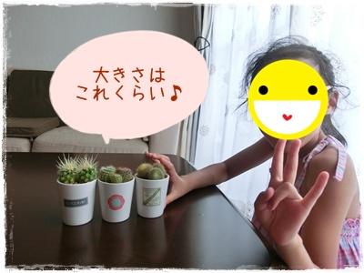 CIMG0385.jpg