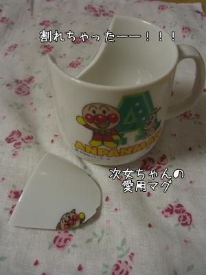 CIMG9806.jpg