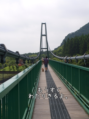 P8214115.jpg