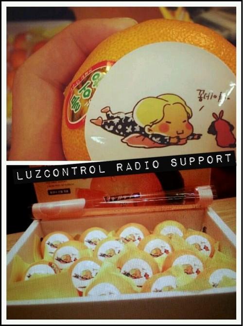 130422 sukira -4 tw@LUZcontroll support