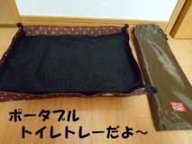 2011121604.jpg