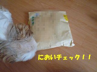 2012030802.jpg