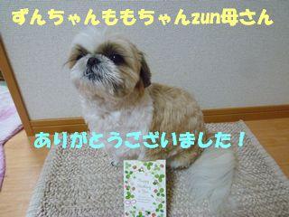 2012031605.jpg