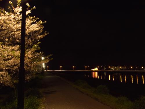 20100410-(71).jpg