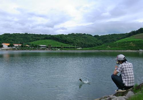 20100703.jpg