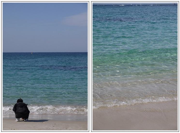2014年1月28日 白浜 (8)