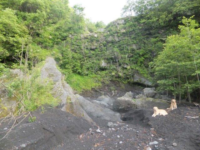 dennsuke20120726.jpg