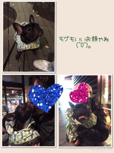 201411271132544c3.jpg