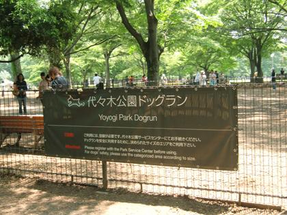 ヤマト記念日4