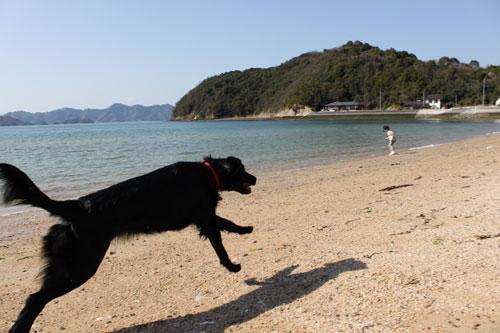 大三島の海2
