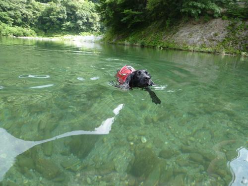 2010夏キャンプ川2