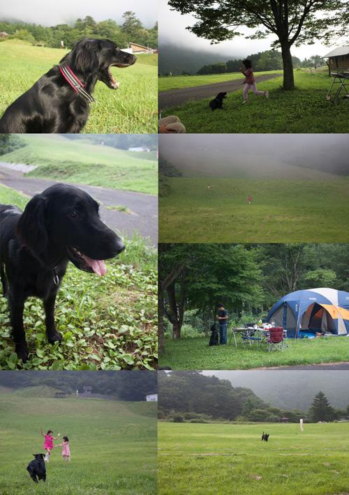 2010夏キャンプ